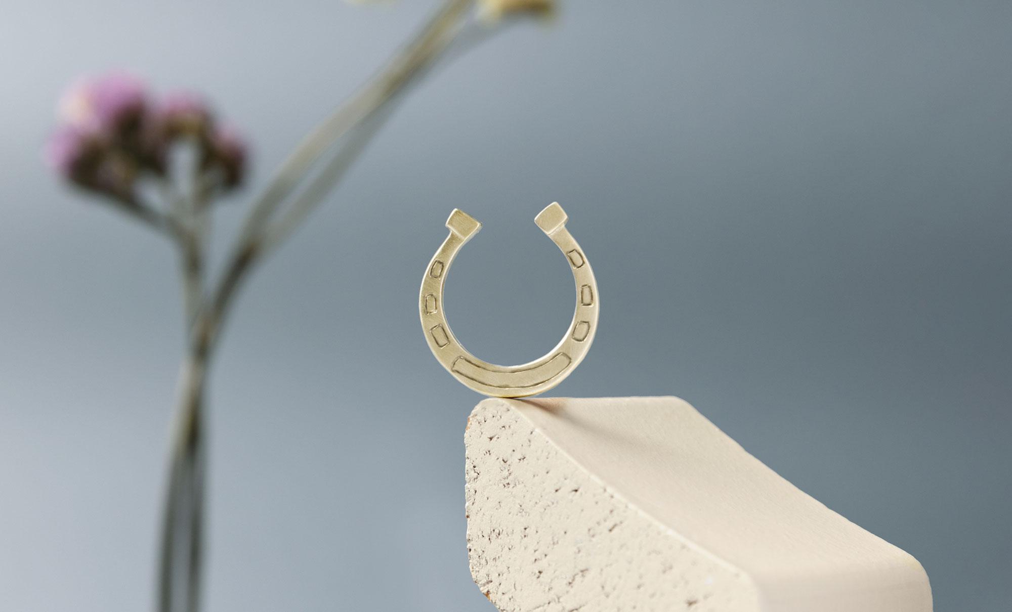 slides-anello-ferro-cavallo